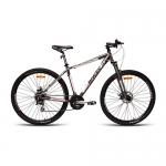 Велосипед найнер Biwec Coupe Contact 29, 17 серебро